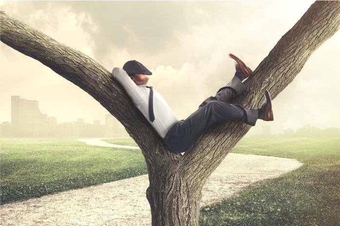 木の枝で昼寝をしている男性の写真
