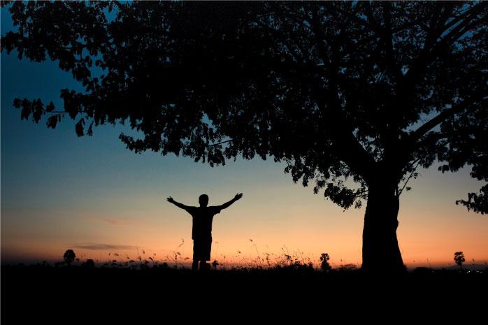 夕日に向かって両手を上げる人の写真
