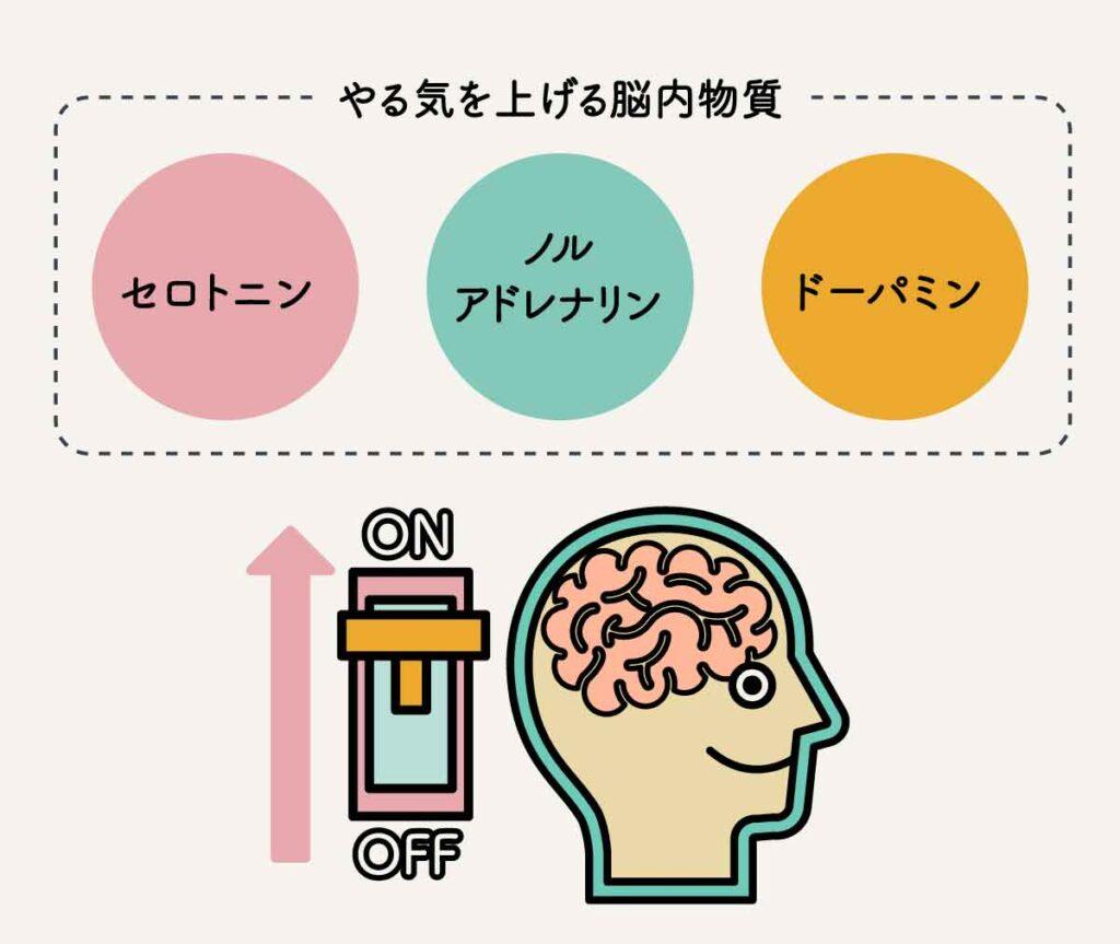 やる気を上げる脳内物質